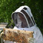 Méhész Kabát És Egyéb Fontos Felszerelések Méhészek Számára